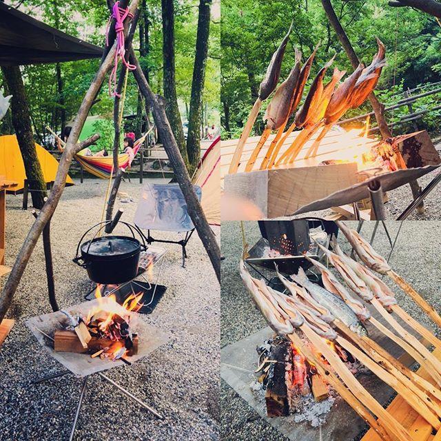 無事に現地調達できたお魚で夕ご飯。#ダッチオーブン #ニジマス #焚火 #塩焼き #ブッシュクラフト #キャンプ