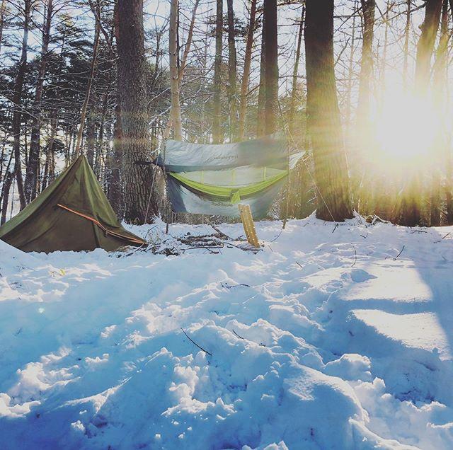 あーたーら、しーい朝が来た。#冬キャンプ #雪中キャンプ ##ブッシュクラフト