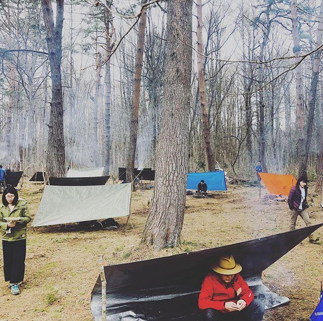 楽しい愉しい仲間たち。森のリズムで一体化していくのが素敵です。#ジャパンブッシュクラフトスクール #認定アドバイザー講習 #ラボランド #黒姫高原