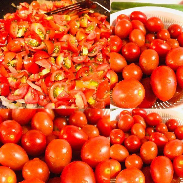 #トマト #とまと #tomato #とめーと 1kg ぐらい取れたので、 #トマトソース にして保管する。#今日の保存食